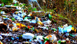 Вывоз мусора машинами