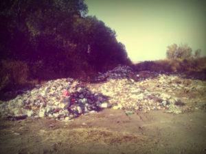 Вывоз мусора в Сергиевом Посаде