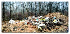 Вывоз мусора в Балашихе