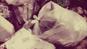 Вывоз мусора в Жуковском