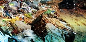 Срочный вывоз мусора