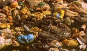 Вывоз мусора в Реутове