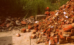 Вывоз мусора в Рузе