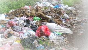 Вывоз мусора в Котельниках